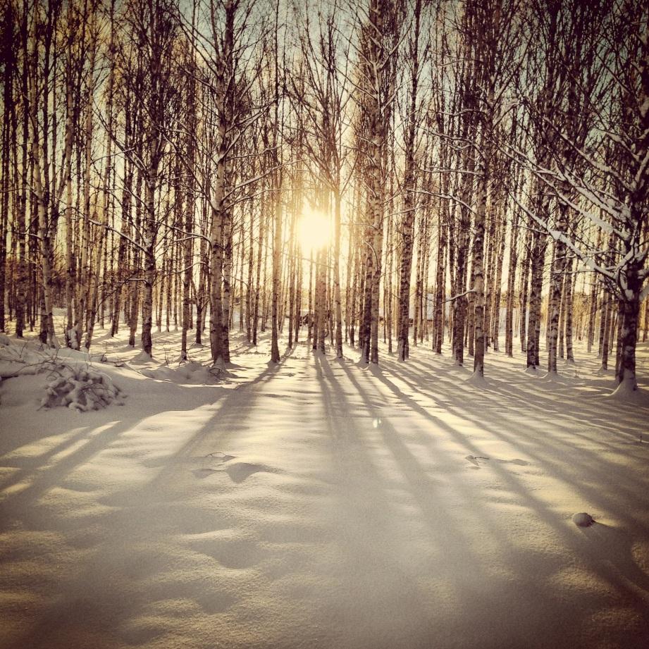 Photo 2012-12-27 14 09 02