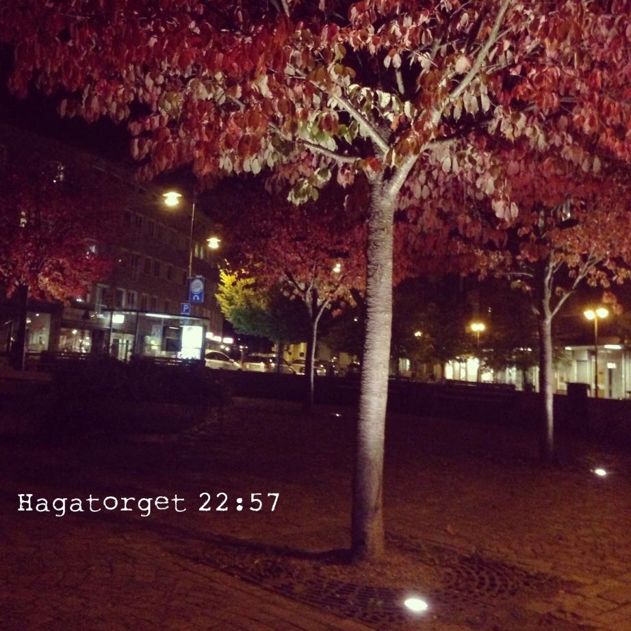 Photo 2013-09-28 22 49 45